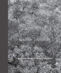 VisibleInvisible_ReedHilderbrand