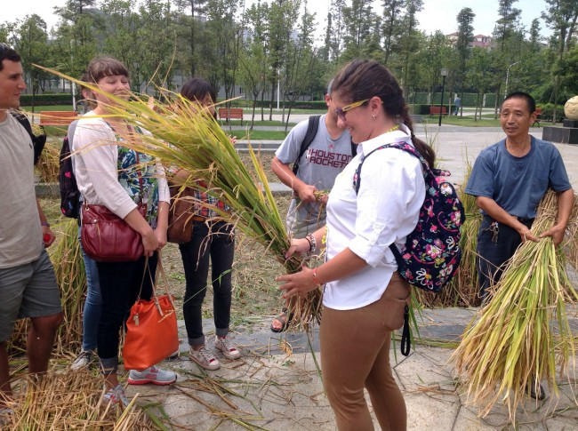 LSU students thresh corn to prepare for their visit to the agricultural areas outside of Ya'an
