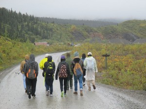Group walking down rural road in the rain, misty forest in background