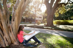 Student sits under crepe myrtle tree, sketching on large white paper