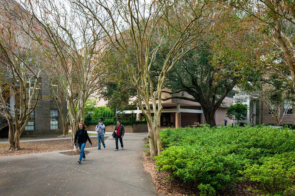 LSU Design Building