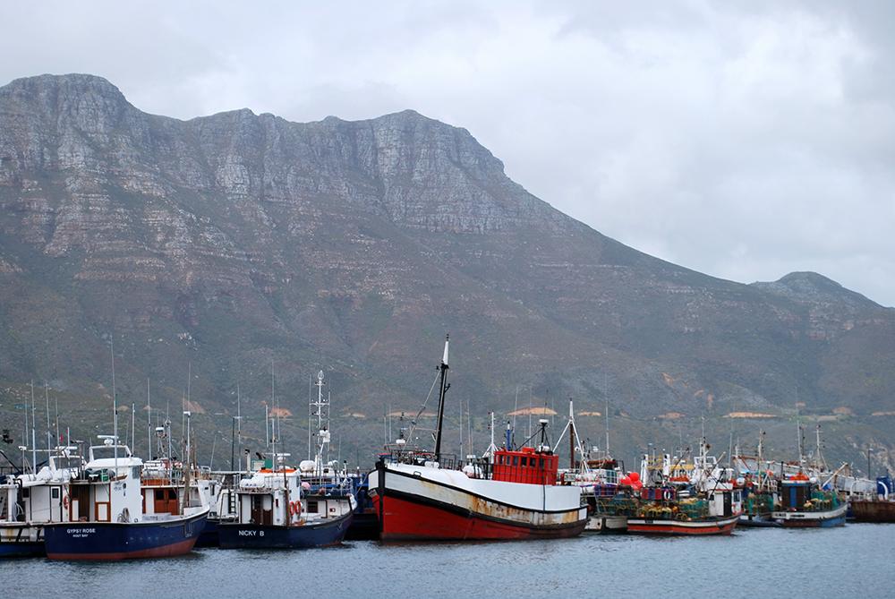 LSU in South Africa, Fish Hoek