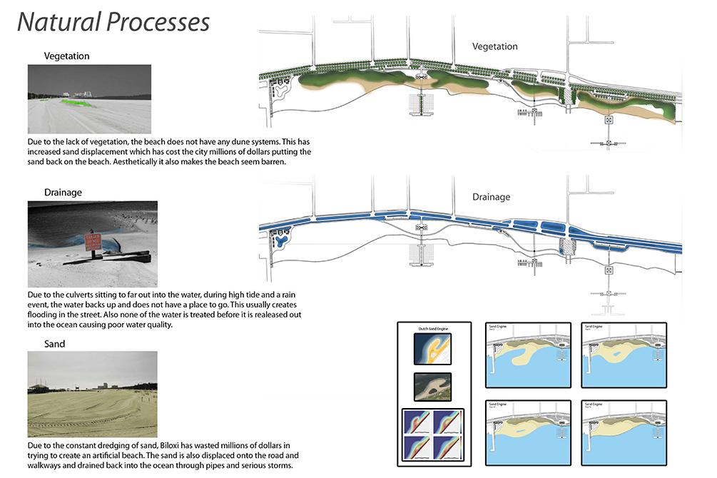 Diagram of natural processes: vegetation, drainage, sand. LA 4008 Advanced Topics Studio work