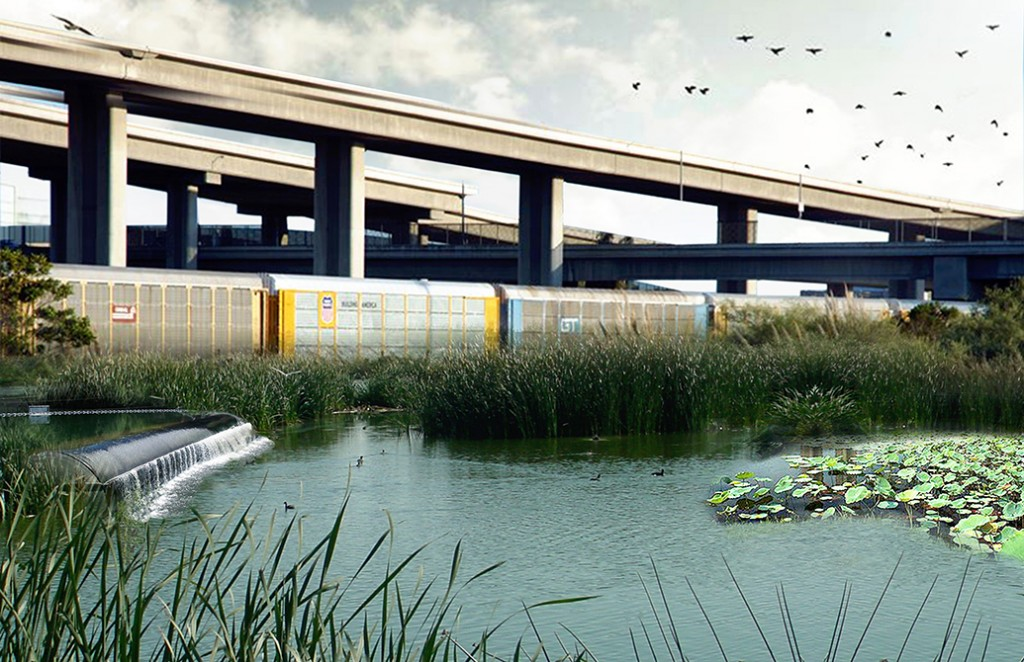 Healthy wetland by railroad and highway