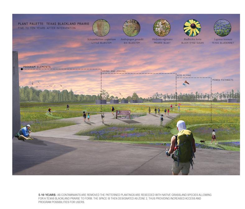 Plant Palatte: Texas Blackland Prairie, LA 5002 Landscape Design VIII Capstone Project