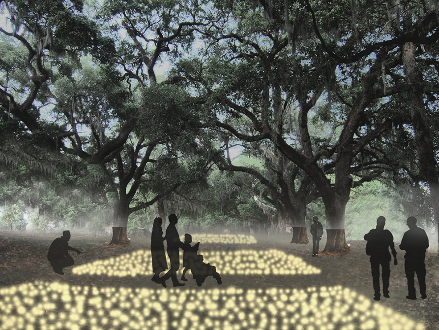 Shadows of human forms under oak trees. LA 7002 Graduate Landscape Design II: Site Design
