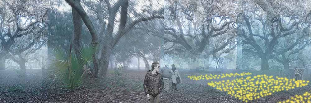 people walking in forest. LA 7002 Graduate Landscape Design II: Site Design
