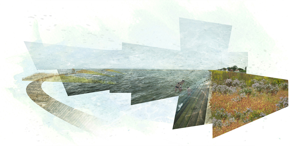 Geometric shapes with images of field, water, coast. LA 7003: Graduate Landscape Design III: Community Design