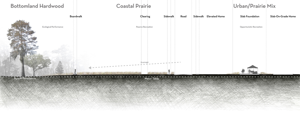 Cross section with bottomland hardwood, coastal prairie, urban/prairie mix with boardwalk, clearing, sidewalk, road, elevated home, slab foundation, home indicated. LA 7003: Graduate Landscape Design III: Community Design