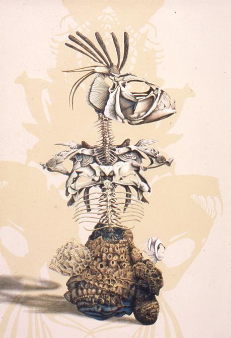 Skeletal body evoking fish parts, coral. Ryan O'Malley LSU MFA printmaking