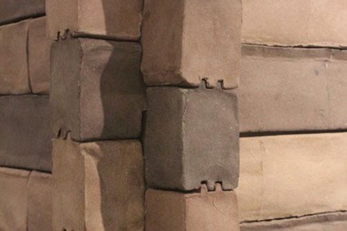 robyn wall