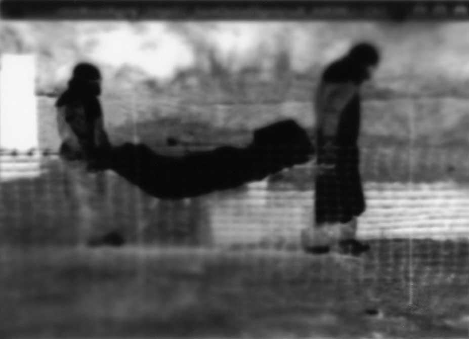 blurry image by kristine thompson