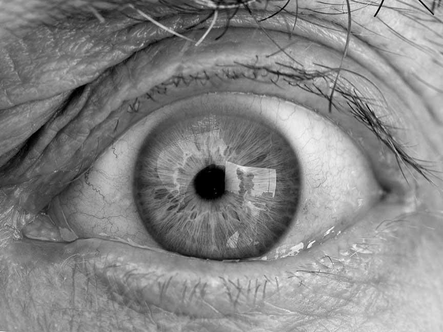 human eye, kristine thompson
