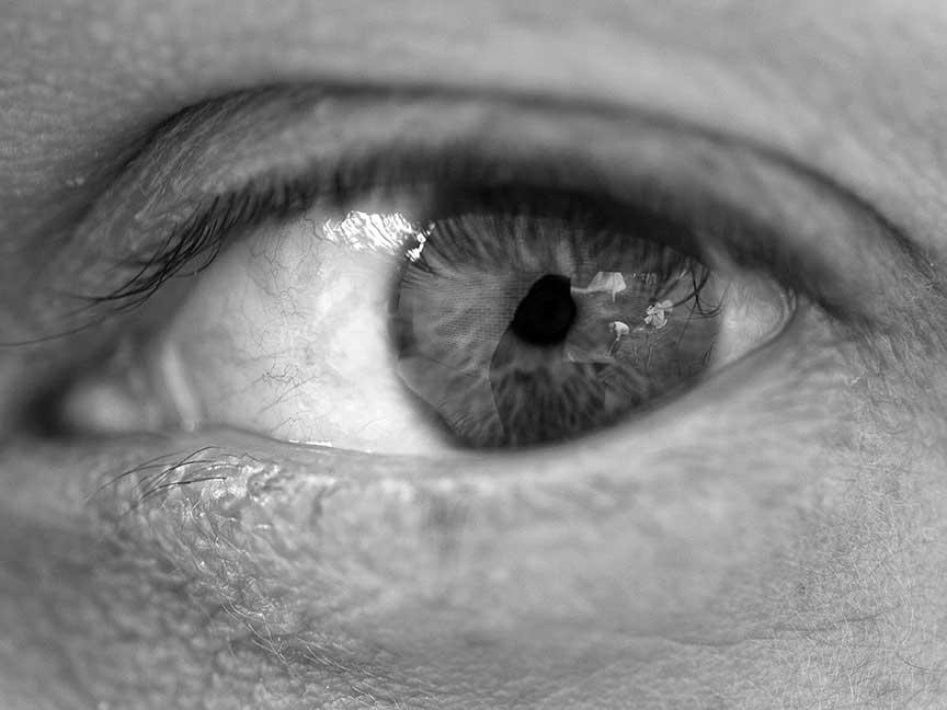 eye, kristine thompson