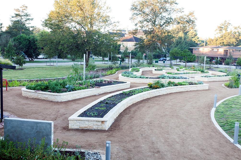 Meredith Community Gardens, Mandell Park, Houston, TX