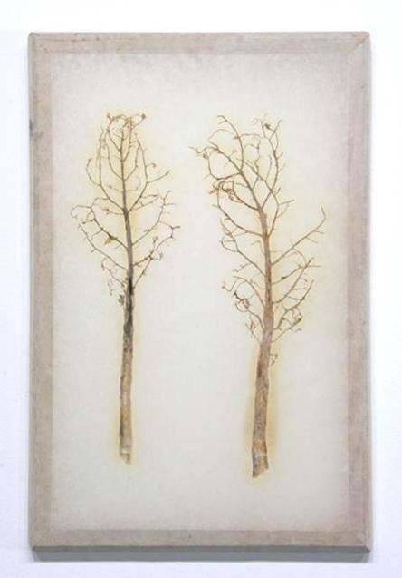 Two bare trees print, LSU BFA MFA Studio Art Printmaking Papermaking
