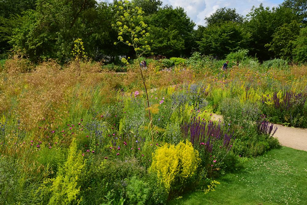 garden, james hitchmough site photo