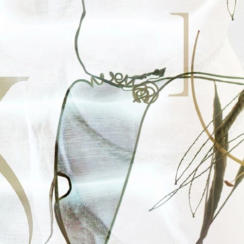 Karin Watts MFA thesis Graphic Design