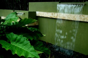 Waterfall cascading into large green ferns; lsu landscape architecture alumni work