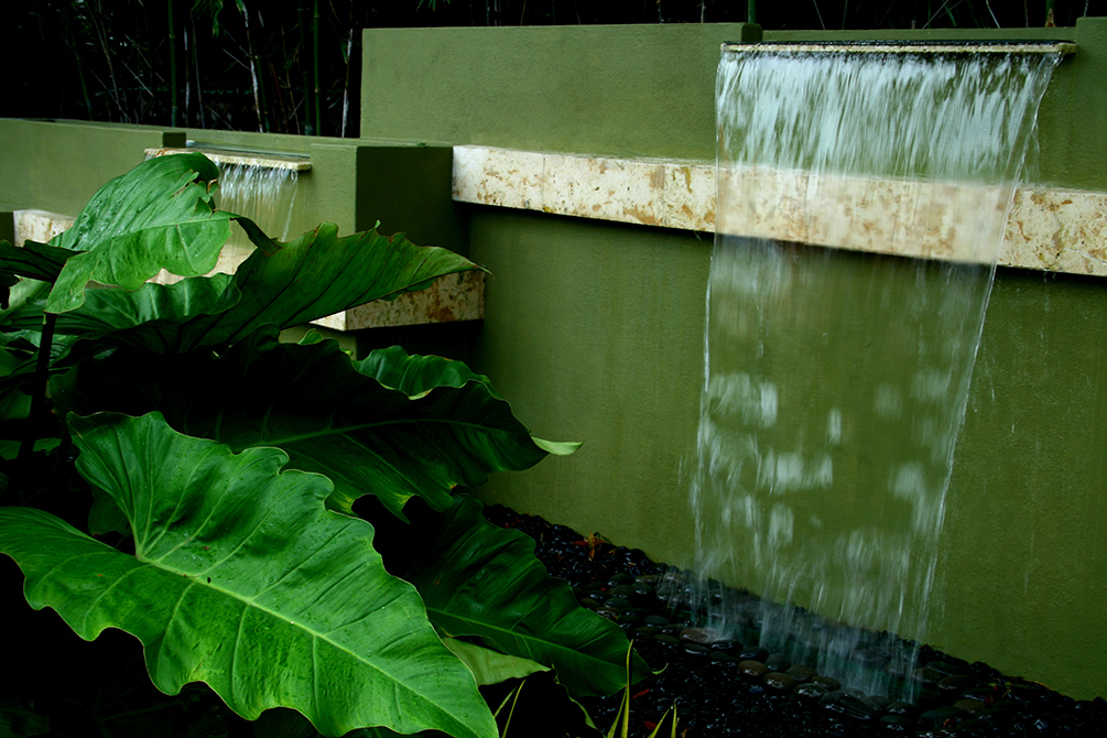 Waterfall cascading into large green ferns; lsu landscape architecture alumni work