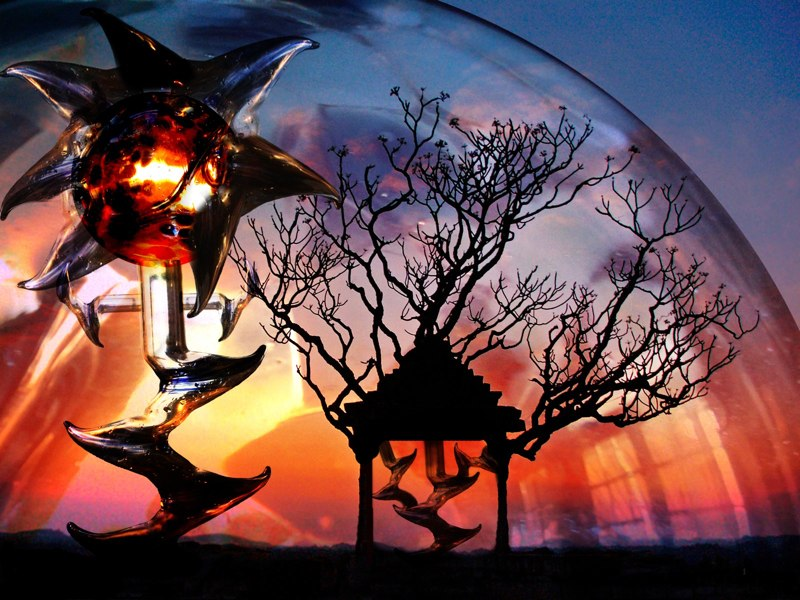 Plant shapes in glass dome, sunset in background. LSU BFA Studio Art Digital Art