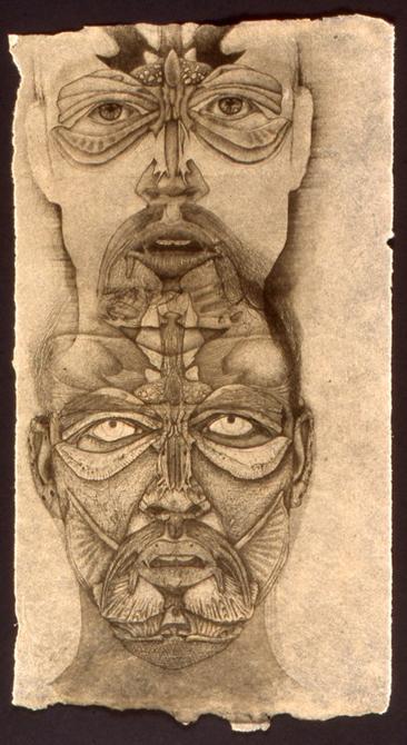 Sketch of anatomy of man's face, LSU BFA MFA Studio Art Printmaking Papermaking
