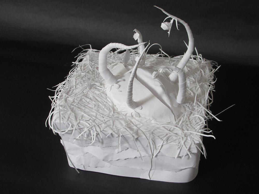 paper Thorns. LSU BFA Studio Art Foundations