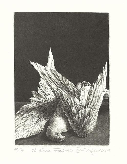 drawing dead bird
