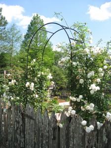 CheneVert_GardenGate_WEB