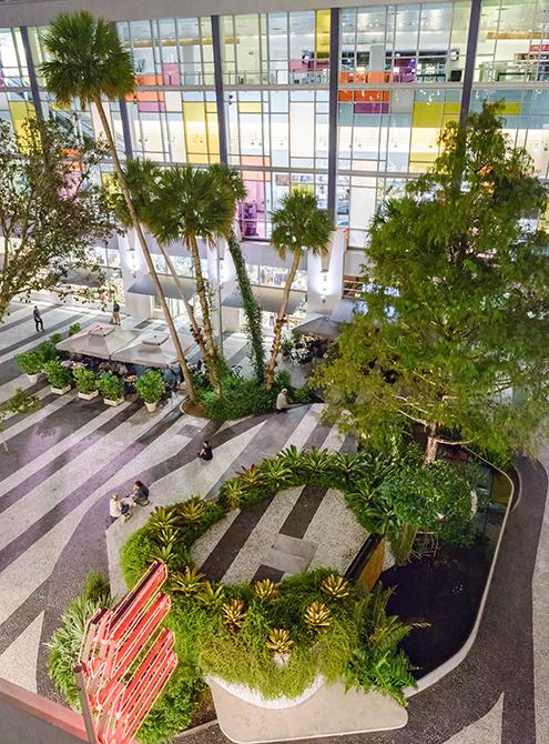 Atrium with palm trees, raymond jungles