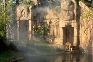 Tiger habitat, lsu landscape architecture alumni design