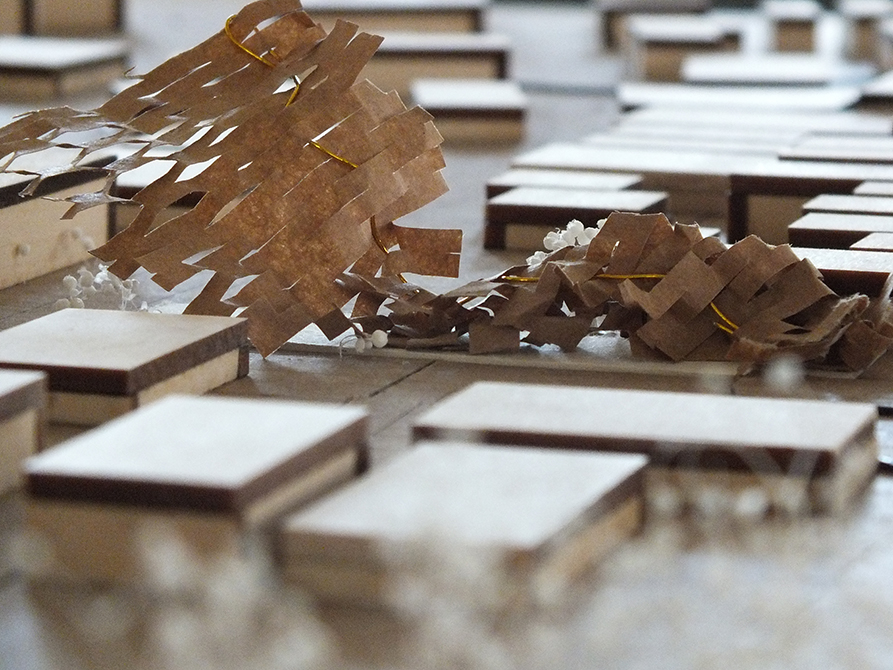 model closeup, lsu architecture student work