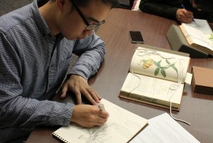 Student sketching from a book in LSU Hill Memorial Library