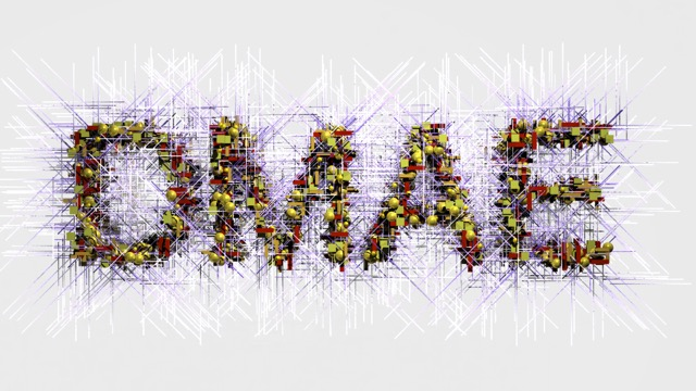 DMAEProgram_02