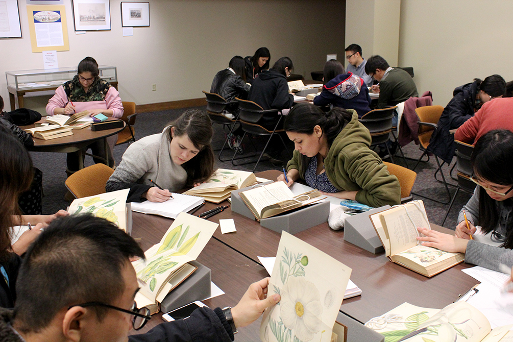 students work in lsu hill memorial library