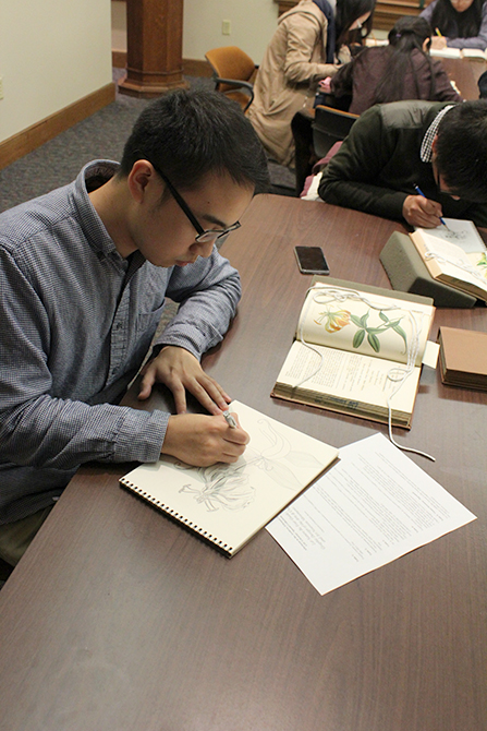 Student sketching flowers from a book in Hill Memorial Library