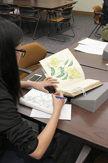 lsu hill memorial library student sketching