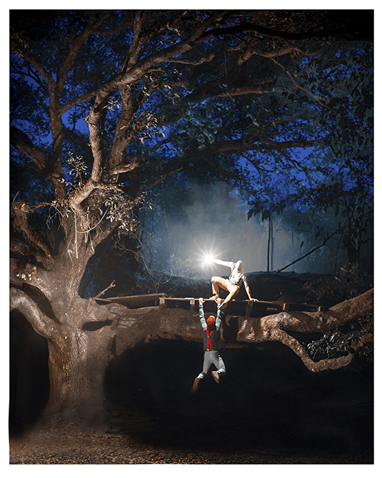 boys climbing tree at night