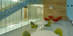 Dru Lamb work, lsu interior design alumni
