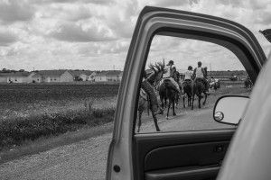 black and white photo horses through car door, lsu photography faculty work