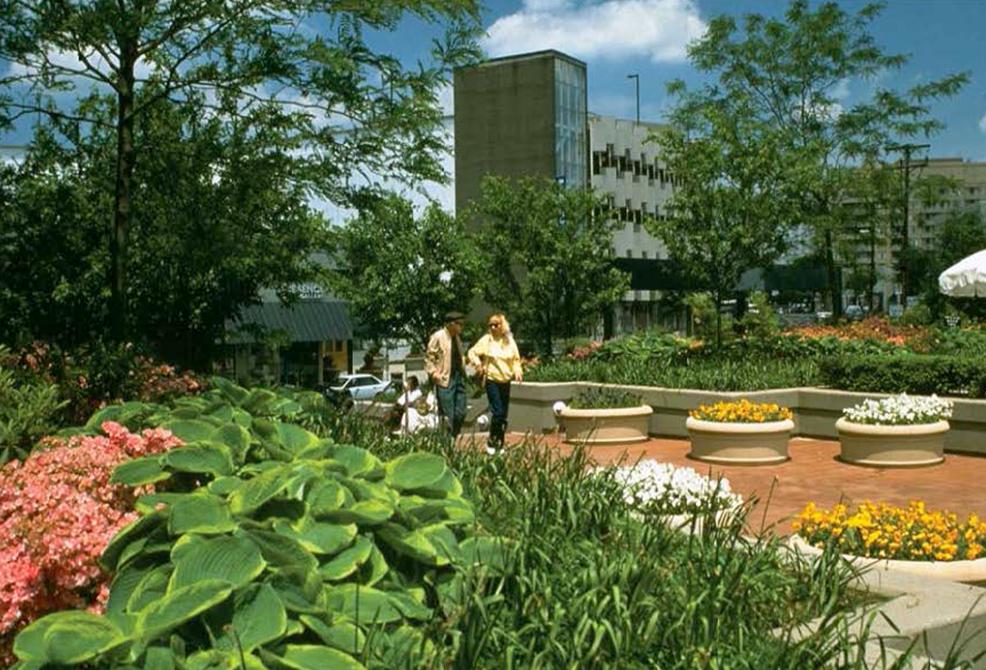 garden space