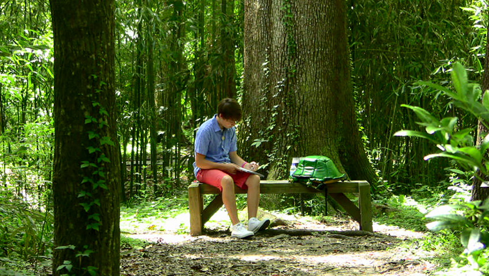 Student sketching plants on a bench in the forest