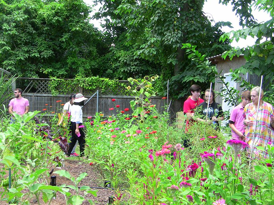 lsu landscape architecture camp flower garden