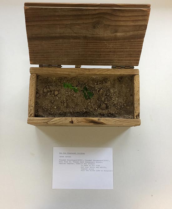 wooden box of soil. lsu photography student work