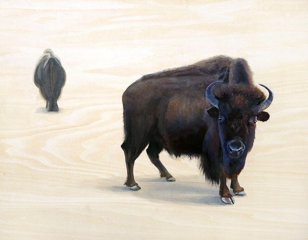 Buffalo painted on wood, shelby prindaville