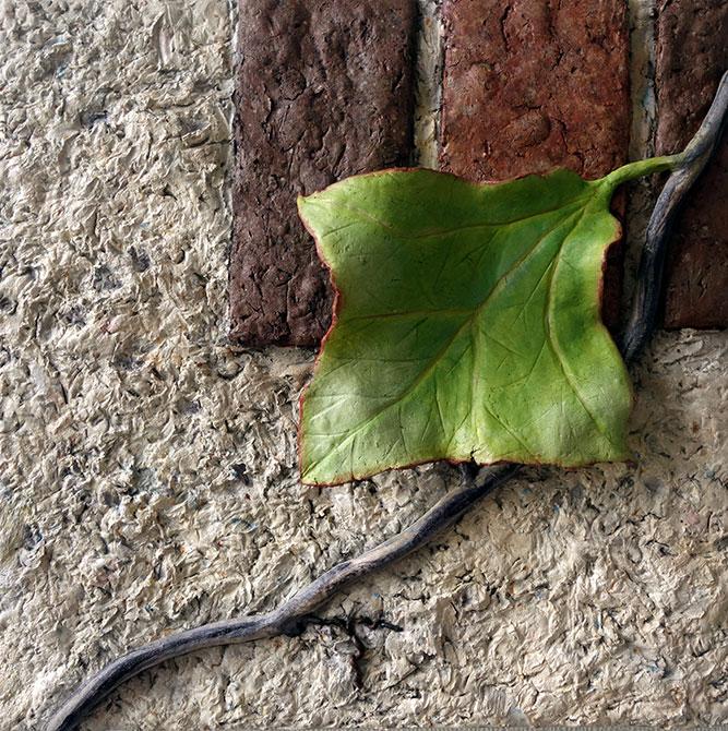 Leafy vine on brick, shelby prindaville