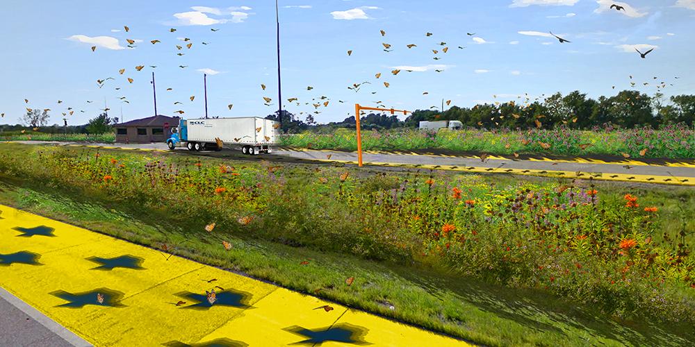 pollinator highway simulation