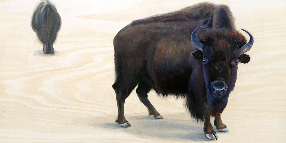 painting of bison, shelby prindaville