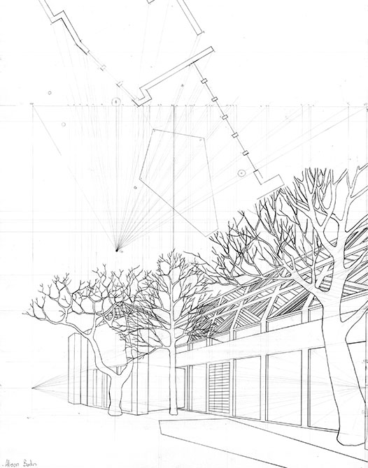 Drawing of trees outside home
