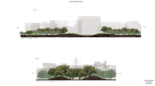 Section elevations rendering of campus quad redesign